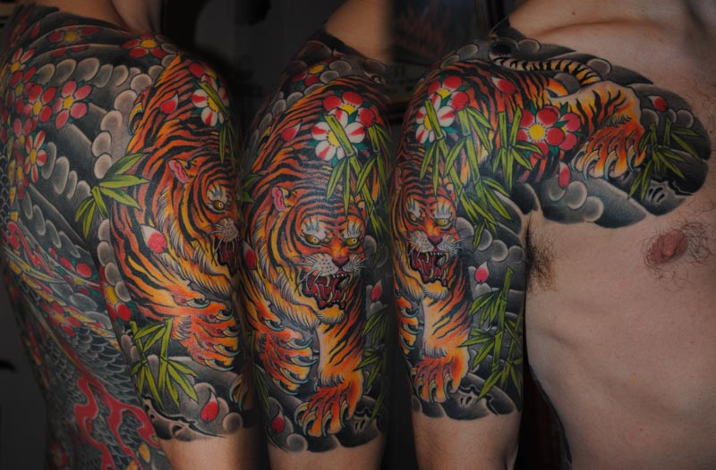 Tiger Bamboo Phil Jun11 Lo Tattoo Pictures Last Sparrow Tattoo