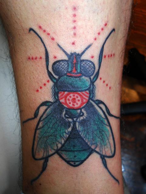 moska fly