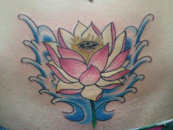 lotus on belly