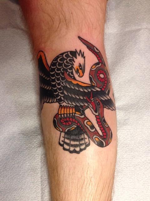 Snake v Eagle shin