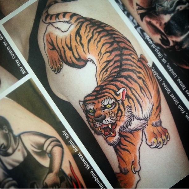 Tiger by Stewart Robson