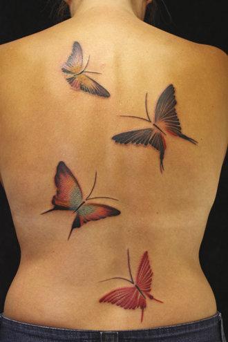 2010 Debut Butterflies