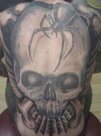 skull n spider