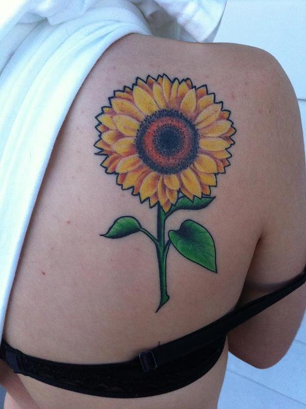 Healed sunflower