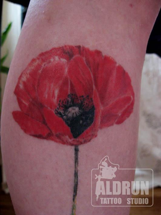 aldrun tattoo studio