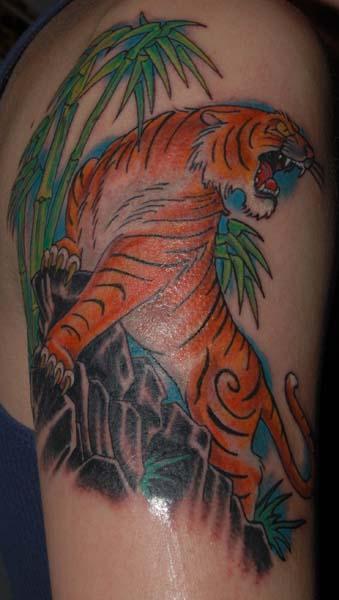 cole tiger