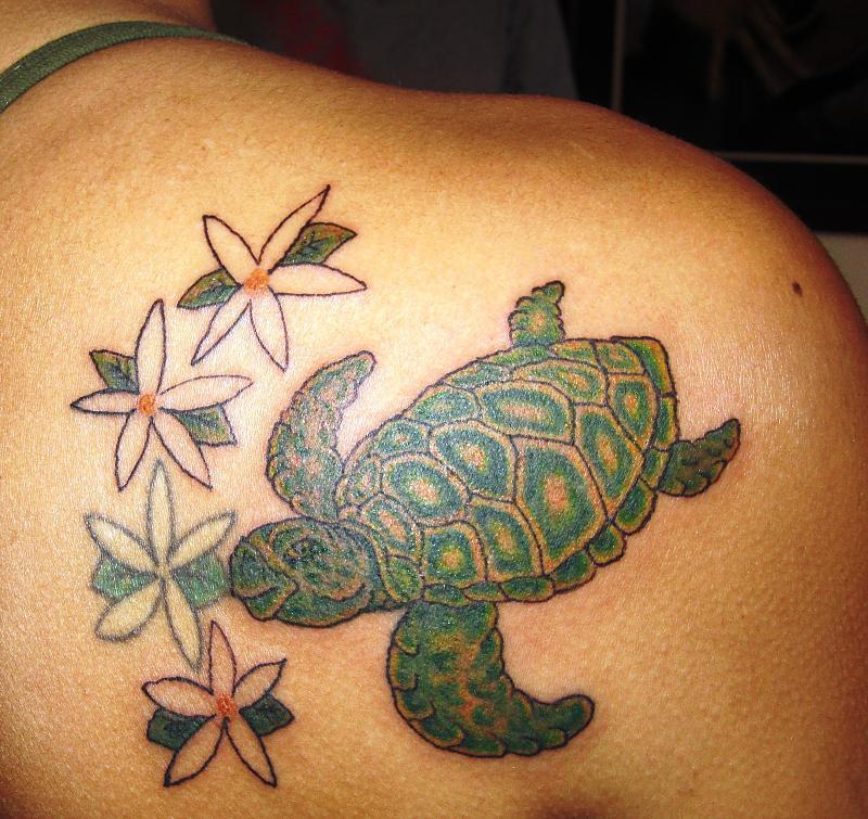 Turtle and Jasmine Flowers