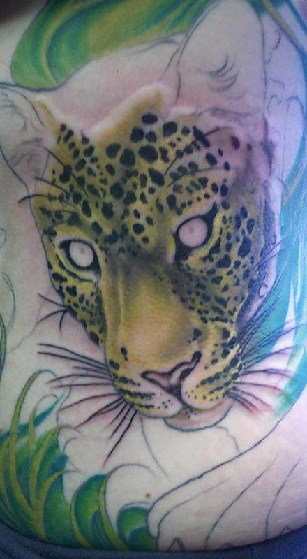 Leopard on Stomach/Side