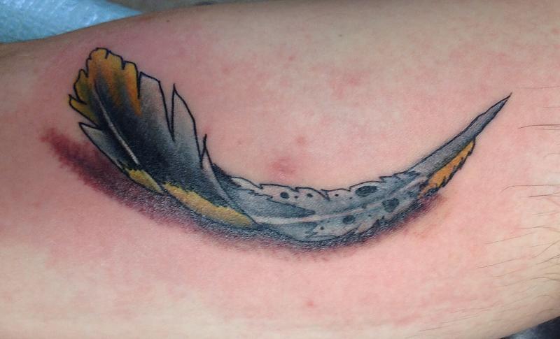 AHS Warrior feather