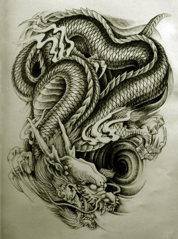 dragon collection