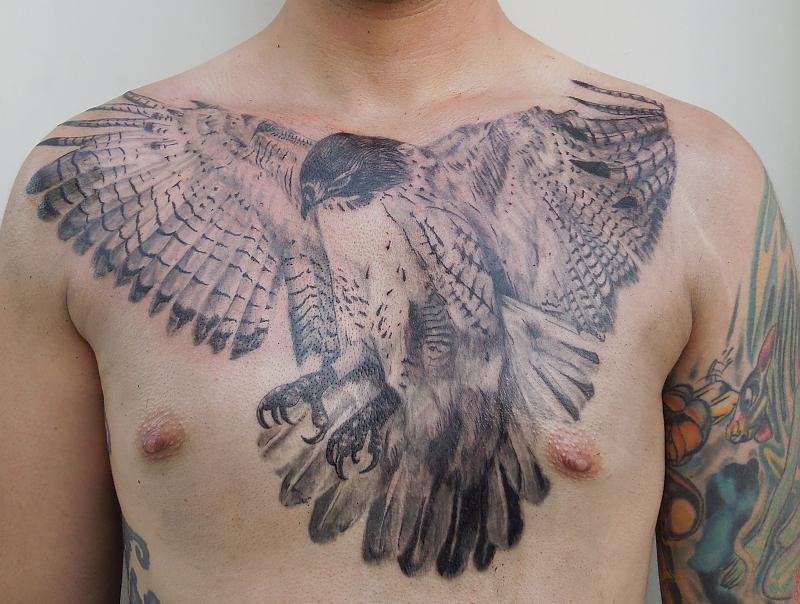 Hawk Chest Piece