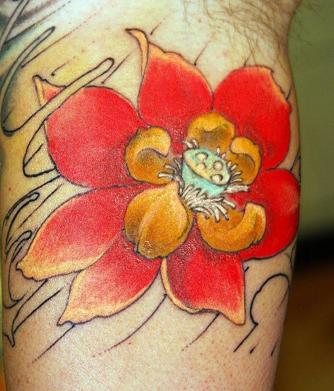 hans lotus