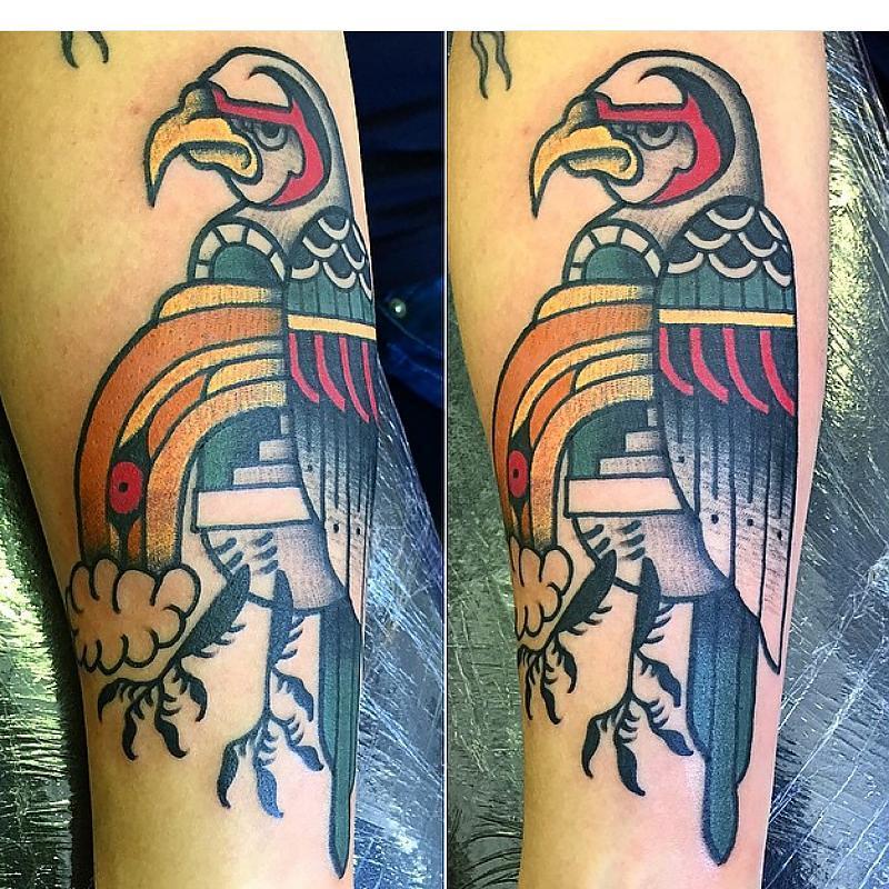 Falcon, psychedelic road kill