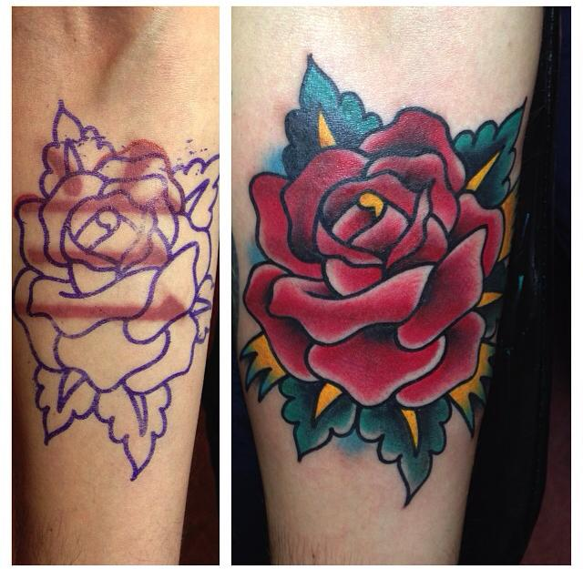 Trevor Taylor rose cover-up