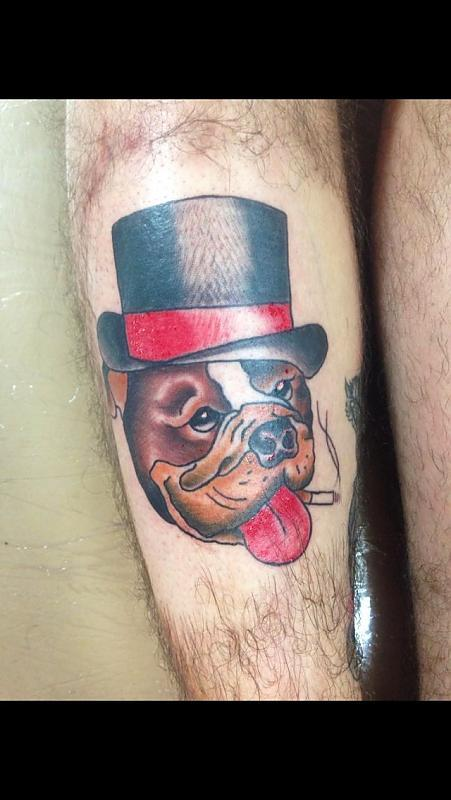 Timmy tatts bulldog
