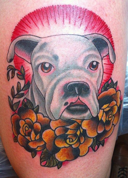 cash the boxer pup