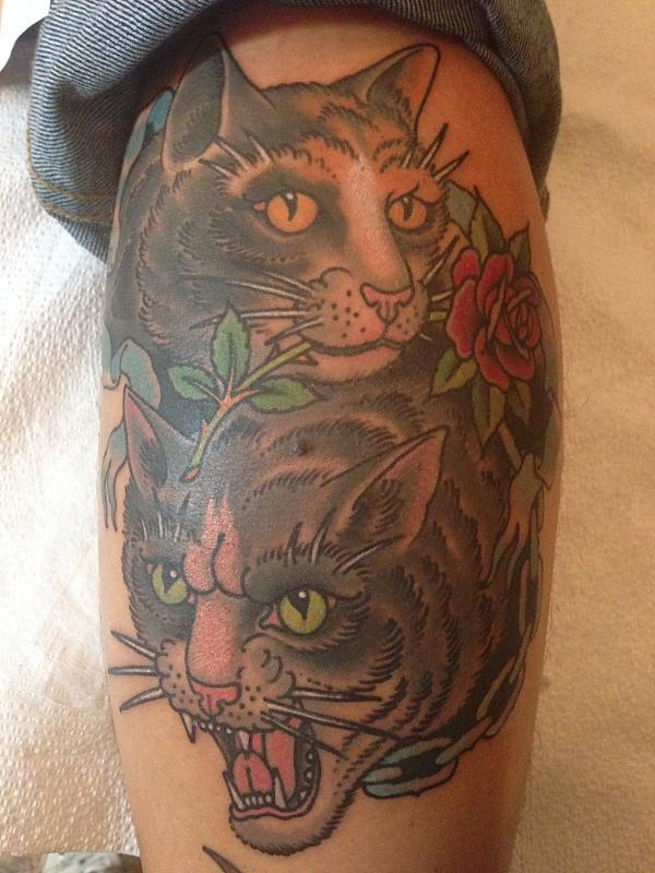 Cats by Grez