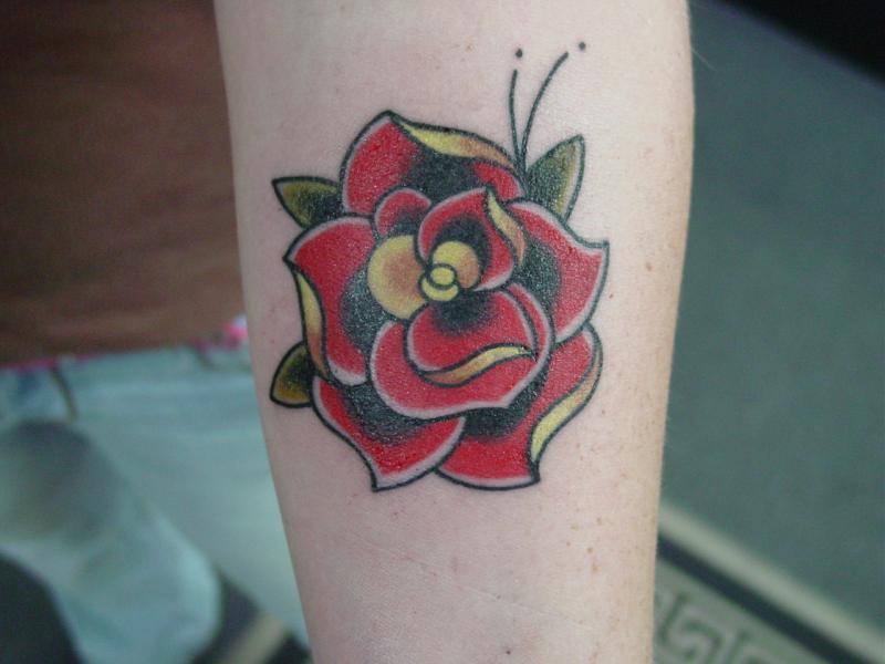 trad red rose