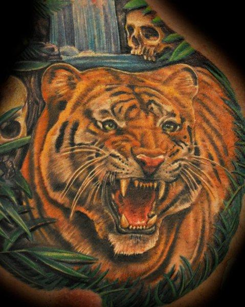 nate beavers color tiger portrait