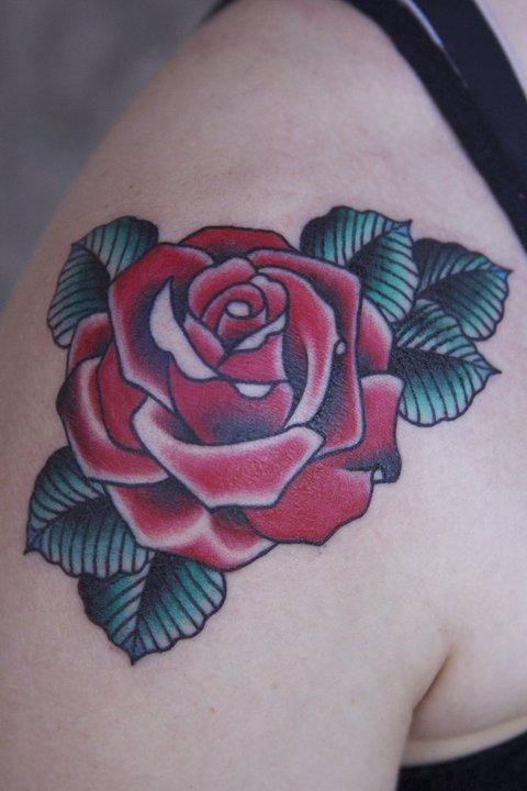 Frankie Caraccioli rose