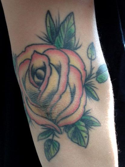 Elbow rose