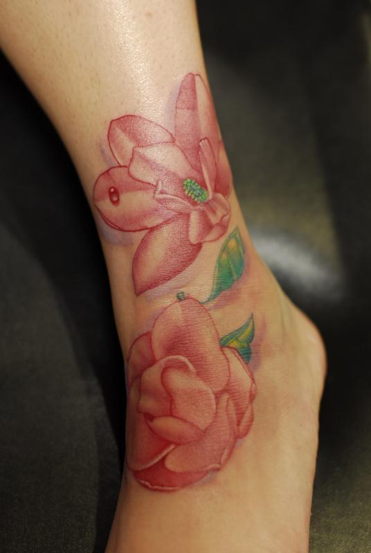 magnolias by sam laurent