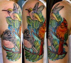 bird sleeve 3