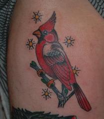 tim cardinal