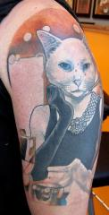 Freds cat