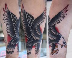 eagle final