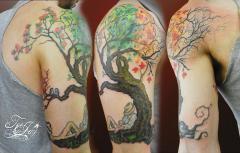 Deacons Tree