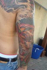 Dragon Koi fish cover up