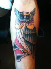 trad owl