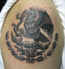 patria eagle