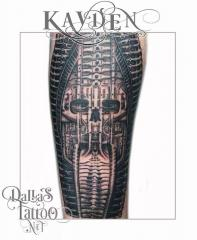 Biomechanical Skull Giger