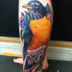 Robin Tattoo
