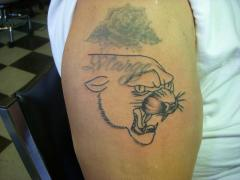 panther cover up