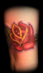 rose cover up of name