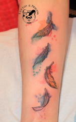 Feather Aquarel