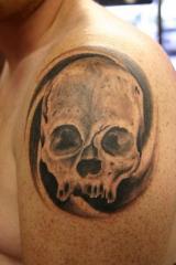 Skull with swirl copyweb
