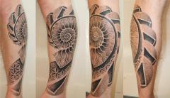 Ammonite calf piece