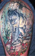 Wolf n birch