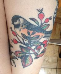Chickadee and Rosehips by Seth Wood