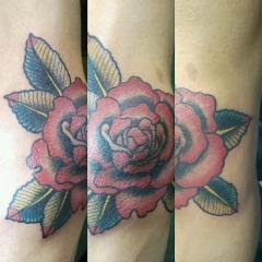 Rose Elbow