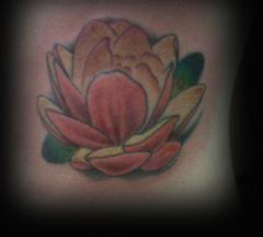 Lotus Ribs