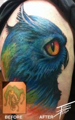 OWL COVERUP