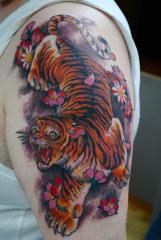 tiger blossom jan11
