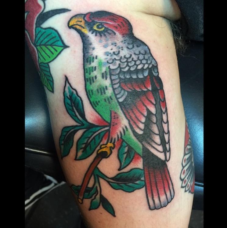 Dietzel Bird
