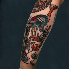 Peacock by Luke Jinks done at Cloak and Dagger Tattoo