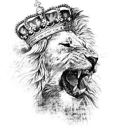 Lion Tattoo.jpg